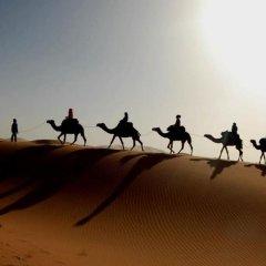 Отель Dar Mari Марокко, Мерзуга - отзывы, цены и фото номеров - забронировать отель Dar Mari онлайн приотельная территория фото 2
