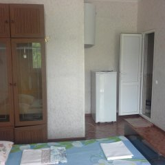 Гостевой дом Простор Стандартный номер с 2 отдельными кроватями фото 5