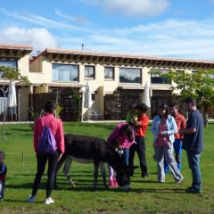 Отель Rural Bioclimático Sabinares del Arlanza Испания, Когольос - отзывы, цены и фото номеров - забронировать отель Rural Bioclimático Sabinares del Arlanza онлайн детские мероприятия фото 2