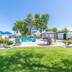 Отель Las Vegas Camping Resort Cabin 3 США, Лас-Вегас - отзывы, цены и фото номеров - забронировать отель Las Vegas Camping Resort Cabin 3 онлайн бассейн фото 2