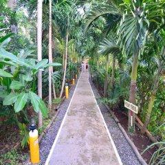Отель Bay View Eco Resort & Spa фото 14