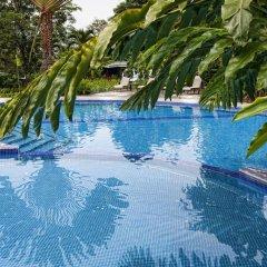Отель Chachagua Rainforest Ecolodge бассейн фото 3