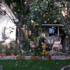 Отель Butterfly Guest House Фаралья помещение для мероприятий фото 2
