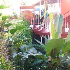 Отель Verney House Resort Ямайка, Монтего-Бей - отзывы, цены и фото номеров - забронировать отель Verney House Resort онлайн фото 4