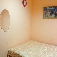 Мини-отель Лира Стандартный номер с различными типами кроватей фото 7