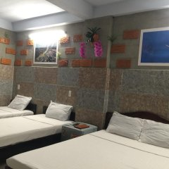 Terra Cotta Homestay and Hostel Кровать в общем номере с двухъярусной кроватью