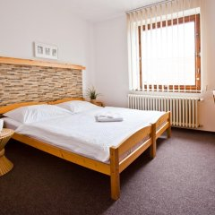 Отель Pension Paldus 3* Стандартный номер с различными типами кроватей фото 9