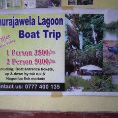 Отель Mango Village Шри-Ланка, Негомбо - отзывы, цены и фото номеров - забронировать отель Mango Village онлайн приотельная территория