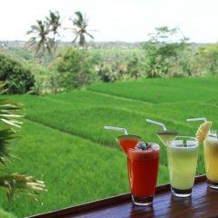 Отель Ti Amo Bali Resort бассейн фото 3