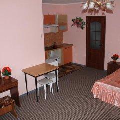 Гостиница Приморская Стандартный номер с различными типами кроватей фото 15