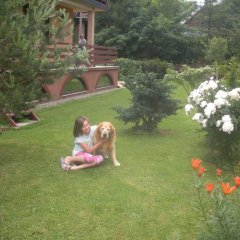 Отель Pokoje Goscinne Na Stromej Закопане с домашними животными