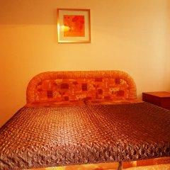 Отель Apartman Karel Чехия, Карловы Вары - отзывы, цены и фото номеров - забронировать отель Apartman Karel онлайн комната для гостей фото 3