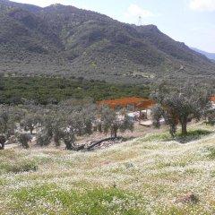 Natureland Efes 3* Стандартный номер с различными типами кроватей фото 5