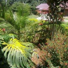 Отель Africana Yard фото 6