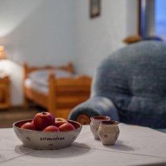 Отель Pensjonat Litworówka Поронин детские мероприятия фото 2