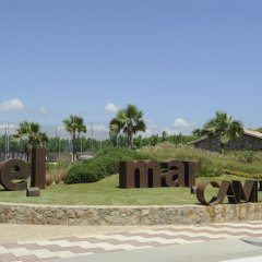 Отель Camping Del Mar Испания, Мальграт-де-Мар - отзывы, цены и фото номеров - забронировать отель Camping Del Mar онлайн фото 5