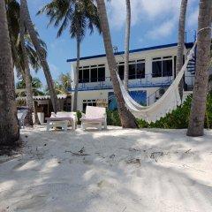 Отель Batuta Maldives Surf View Guest House Мальдивы, Северный атолл Мале - отзывы, цены и фото номеров - забронировать отель Batuta Maldives Surf View Guest House онлайн бассейн фото 2