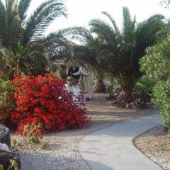 Отель Ecoxenia Studios Греция, Остров Санторини - отзывы, цены и фото номеров - забронировать отель Ecoxenia Studios онлайн фото 7