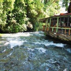 Отель Albanian Happines Guesthouse бассейн