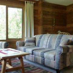 Отель Mica Mountain Lodge & Log Cabins комната для гостей фото 5