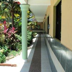 Отель Aparta Hotel Bruno Доминикана, Бока Чика - отзывы, цены и фото номеров - забронировать отель Aparta Hotel Bruno онлайн фото 7