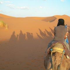 Отель Morocco Desert Trek Марокко, Мерзуга - отзывы, цены и фото номеров - забронировать отель Morocco Desert Trek онлайн приотельная территория фото 2