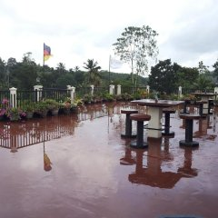 Отель Manikgoda Tea Paradise фото 3