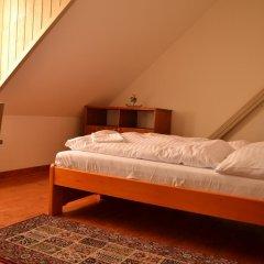 Отель Penzion Dvůr Krasíkov Стандартный номер с различными типами кроватей фото 10