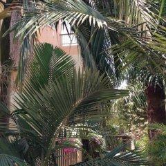 Отель Constantaras Apartments Кипр, Протарас - отзывы, цены и фото номеров - забронировать отель Constantaras Apartments онлайн фото 2