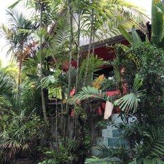 Отель Ruan Mai Sang Ngam Resort фото 17