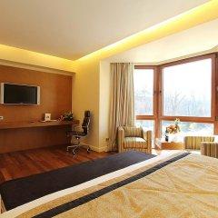 Достык Отель 5* Номер Делюкс с различными типами кроватей фото 2