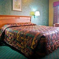 Отель Crystal Inn Suites & Spas 2* Стандартный номер с различными типами кроватей фото 19