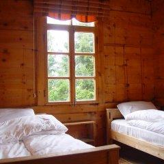 Demircioglu Pokut Dag Evi Стандартный номер с 2 отдельными кроватями (общая ванная комната) фото 3