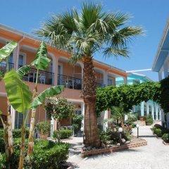 Отель Sofia's Hotel Греция, Каламаки - отзывы, цены и фото номеров - забронировать отель Sofia's Hotel онлайн фото 4
