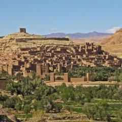 Отель Bivouac Jawhara Марокко, Мерзуга - отзывы, цены и фото номеров - забронировать отель Bivouac Jawhara онлайн приотельная территория фото 2