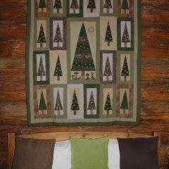 Гостевой дом Бобровая Долина Номер Эконом двуспальная кровать фото 5