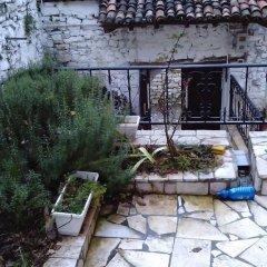 Отель Ana's Hostel Албания, Берат - отзывы, цены и фото номеров - забронировать отель Ana's Hostel онлайн фото 8