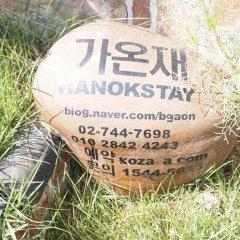Отель Gaonjae Hanok Guesthouse Южная Корея, Сеул - отзывы, цены и фото номеров - забронировать отель Gaonjae Hanok Guesthouse онлайн приотельная территория