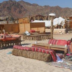 Отель Bella Sina Beach Lodge фото 2