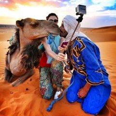 Отель Merzouga Sarah Camp Марокко, Мерзуга - отзывы, цены и фото номеров - забронировать отель Merzouga Sarah Camp онлайн с домашними животными