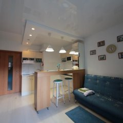 Апартаменты Studio Shkapino 11 комната для гостей фото 3