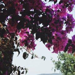Отель Villa Margarit Албания, Саранда - отзывы, цены и фото номеров - забронировать отель Villa Margarit онлайн фото 8