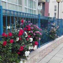 Отель Sun City Apartments Болгария, Солнечный берег - отзывы, цены и фото номеров - забронировать отель Sun City Apartments онлайн фото 2
