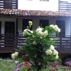 Отель Villa Nasco