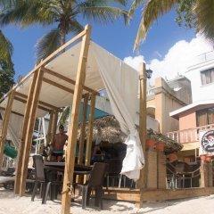 Отель Gusto Tropical Hotel Доминикана, Бока Чика - отзывы, цены и фото номеров - забронировать отель Gusto Tropical Hotel онлайн бассейн фото 2