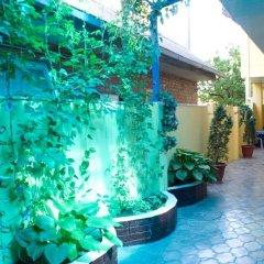 Гостиница Гостевой дом «Натали» в Анапе отзывы, цены и фото номеров - забронировать гостиницу Гостевой дом «Натали» онлайн Анапа