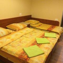 Гостиница Эдельвейс Стандартный номер с различными типами кроватей фото 2
