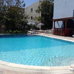 Отель Annapolis Inn Греция, Родос - отзывы, цены и фото номеров - забронировать отель Annapolis Inn онлайн бассейн фото 3