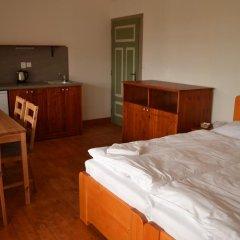 Отель Penzion Dvůr Krasíkov Стандартный номер с различными типами кроватей фото 8