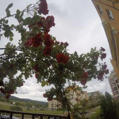 Отель VP Amadeus 19 Болгария, Солнечный берег - отзывы, цены и фото номеров - забронировать отель VP Amadeus 19 онлайн балкон